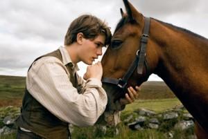 cavalo_guerra
